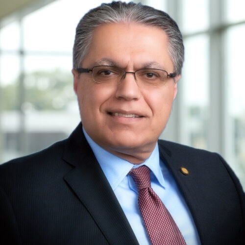 Dr. Mehrdad Saif